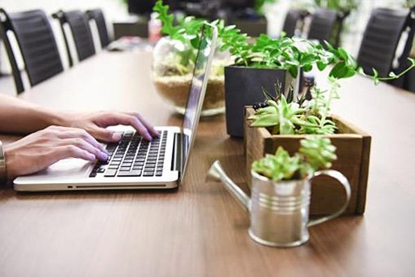 植物を多数並べた長テーブルでノートパソコンでタイピングする手